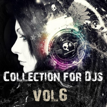 VA-Collection for Dj's vol.6 (2010)