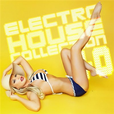 VA-Electro House Collection 40 (2009)