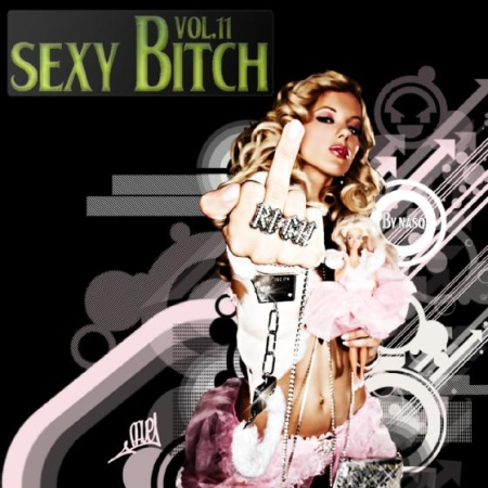 VA-Sexy Bitch vol.11 (2009)
